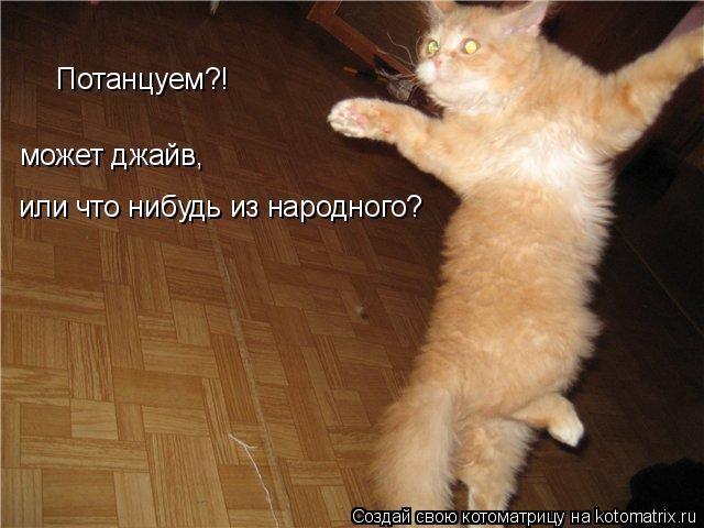 Котоматрица: Потанцуем?! может джайв, или что нибудь из народного?