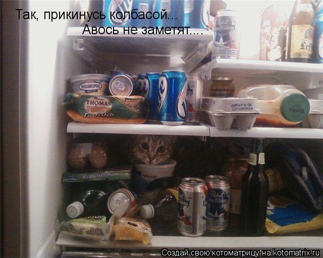 Котоматрица: Так, прикинусь колбасой... Авось не заметят....