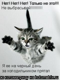 Котоматрица: Нет! Нет! Нет! Только не это!!! Нет! Нет! Нет! Только не это!!! Я ее на черный день за холодильником прятал Не выбрасывай!!!!!!!!!