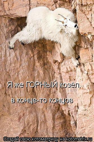 Котоматрица: Я же ГОРНЫЙ козёл, в конце-то концов