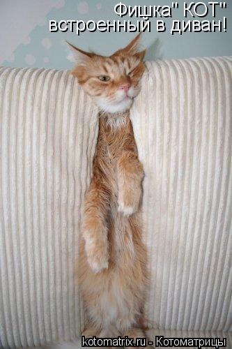 """Котоматрица: Фишка"""" КОТ""""                                                                                     встроенный в диван!  встроенный в диван!"""