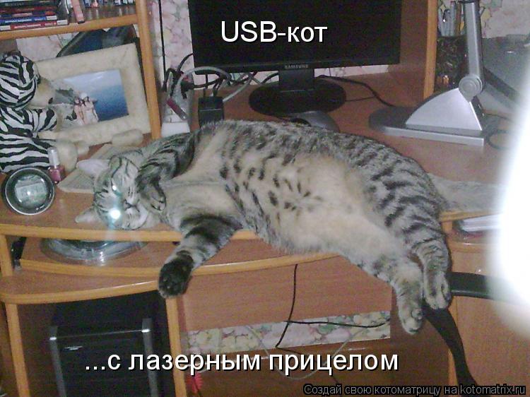 Котоматрица: USB-кот ...с лазерным прицелом