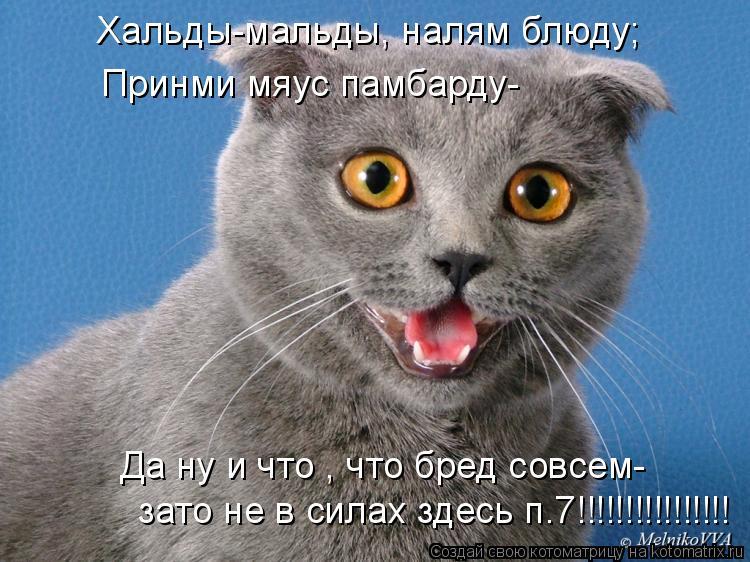 Котоматрица: Хальды-мальды, налям блюду; Принми мяус памбарду- Да ну и что , что бред совсем- зато не в силах здесь п.7!!!!!!!!!!!!!!!!