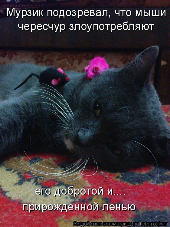 Котоматрица: Мурзик подозревал, что мыши чересчур злоупотребляют его добротой и.... прирожденной ленью