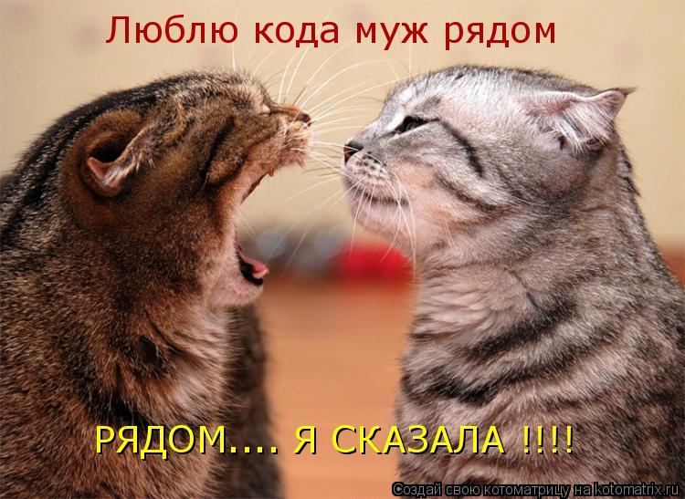 Котоматрица: Люблю кода муж рядом РЯДОМ.... Я СКАЗАЛА !!!!
