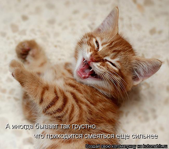Котоматрица: А иногда бывает так грустно... что приходится смеяться еще сильнее