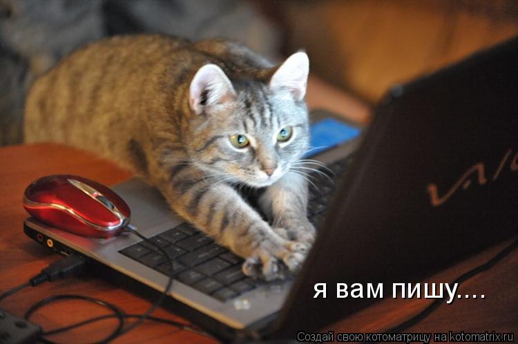 Котоматрица: я вам пишу....