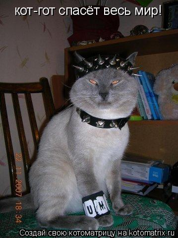 Котоматрица: кот-гот спасёт весь мир!