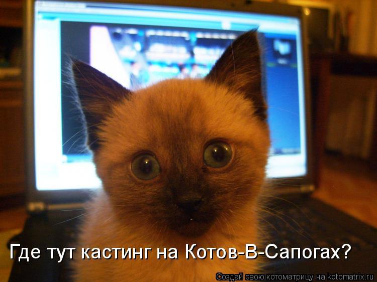Котоматрица: Где тут кастинг на Котов-В-Сапогах?