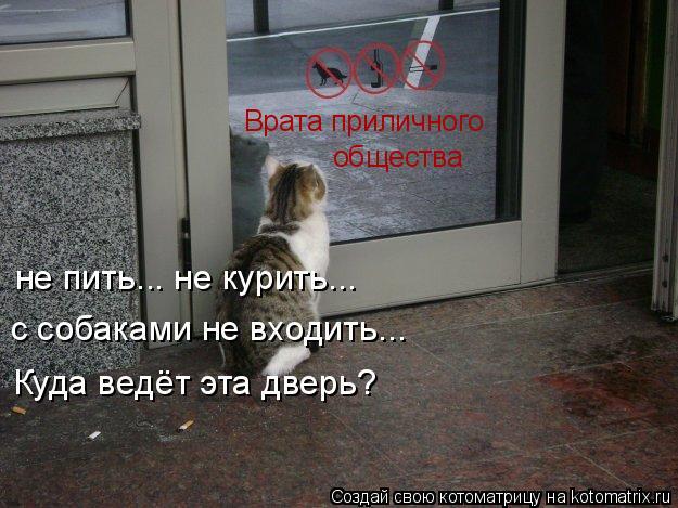 Котоматрица: Врата приличного  общества не пить... не курить...  с собаками не входить... Куда ведёт эта дверь?