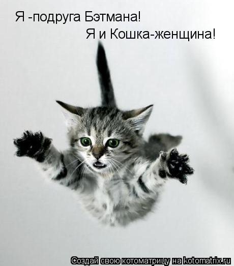 Котоматрица: Я -подруга Бэтмана!  Я и Кошка-женщина!