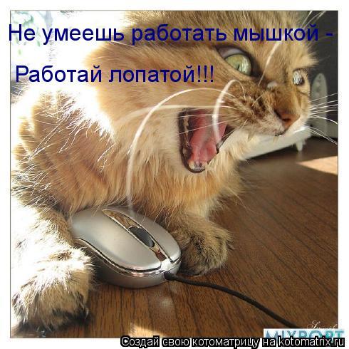 Котоматрица: Не умеешь работать мышкой -  Работай лопатой!!!