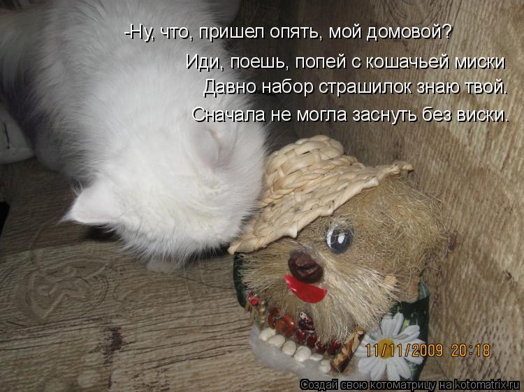 Котоматрица: -Ну, что, пришел опять, мой домовой? Иди, поешь, попей с кошачьей миски Давно набор страшилок знаю твой. Сначала не могла заснуть без виски.