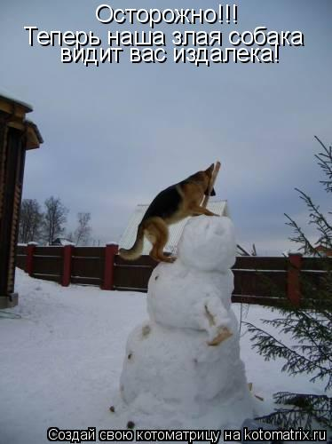 Котоматрица: Осторожно!!! Теперь наша злая собака  видит вас издалека!