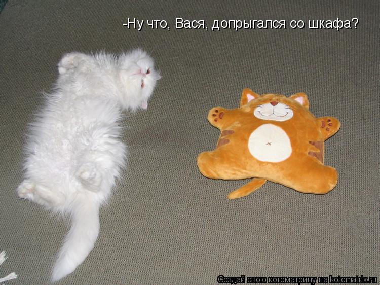 Котоматрица: -Ну что, Вася, допрыгался со шкафа?