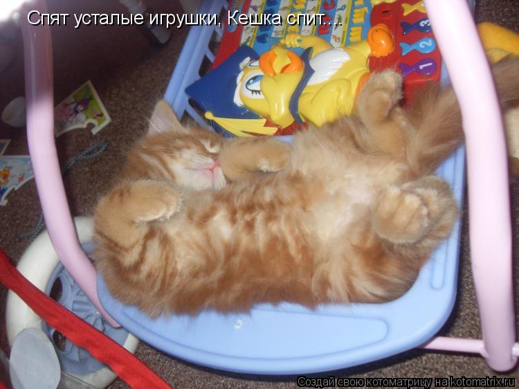 Котоматрица: Спят усталые игрушки, Кешка спит....