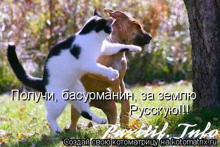 Котоматрица: Получи, басурманин, за землю Русскую!!!