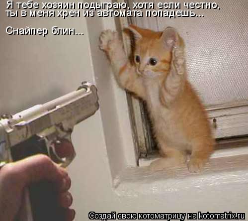 Котоматрица: Я тебе хозяин подыграю, хотя если честно, ты в меня хрен из автомата попадешь... Снайпер блин...