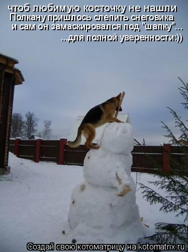 """Котоматрица: чтоб любимую косточку не нашли Полкану пришлось слепить снеговика и сам он замаскировался под """"шапку""""... ...для полной уверенности:))"""