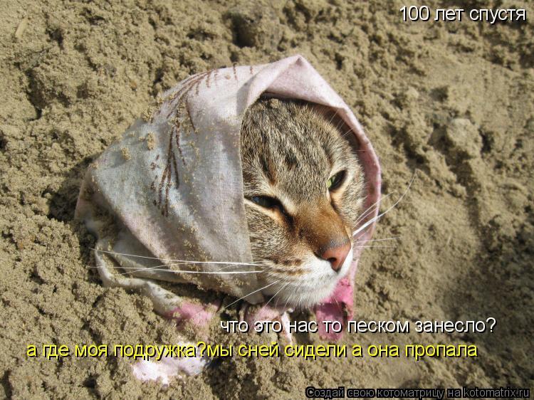 Котоматрица: 100 лет спустя что это нас то песком занесло? а где моя подружка?мы сней сидели а она пропала