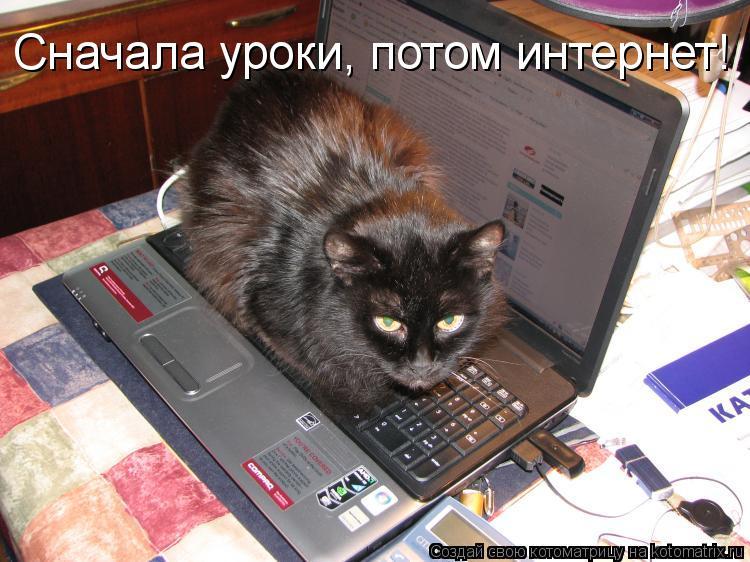 Котоматрица: Сначала уроки, потом интернет!