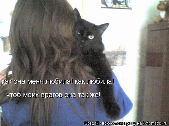 Котоматрица: как она меня любила! как любила! чтоб моих врагов она так же!