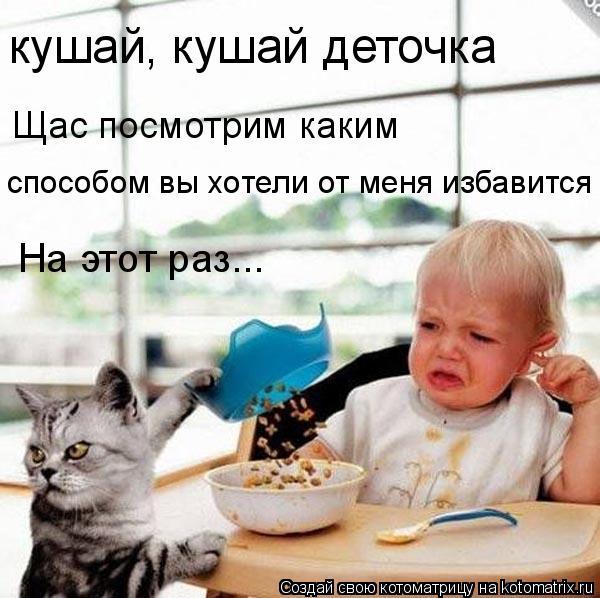 Котоматрица: кушай, кушай деточка Щас посмотрим каким способом вы хотели от меня избавится На этот раз...