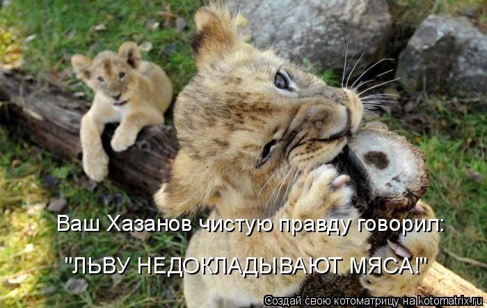 """Котоматрица: Ваш Хазанов чистую правду говорил:  """"ЛЬВУ НЕДОКЛАДЫВАЮТ МЯСА!"""""""