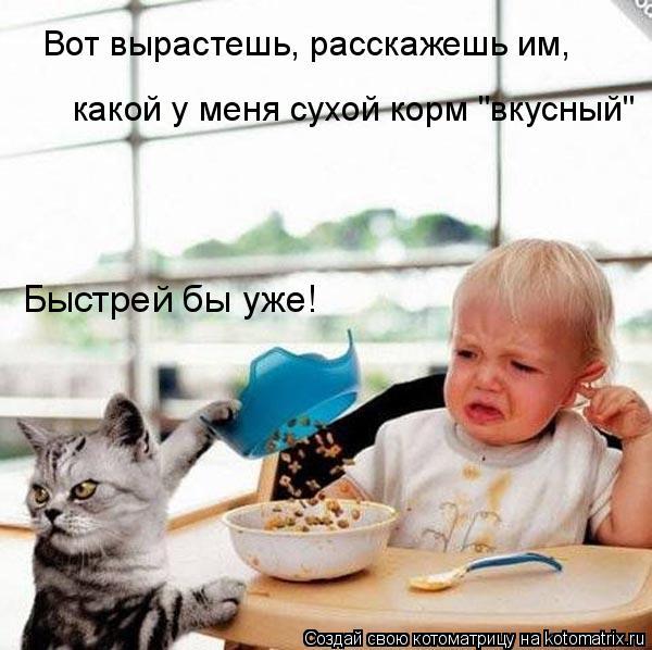 """Котоматрица: Вот вырастешь, расскажешь им,  какой у меня сухой корм """"вкусный"""" Быстрей бы уже!"""