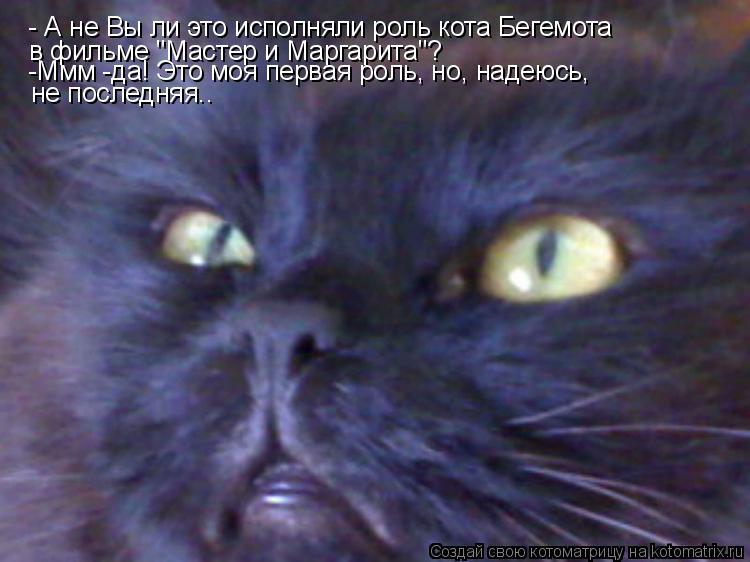 """Котоматрица: - А не Вы ли это исполняли роль кота Бегемота  в фильме """"Мастер и Маргарита""""? -Ммм -да! Это моя первая роль, но, надеюсь, не последняя.."""