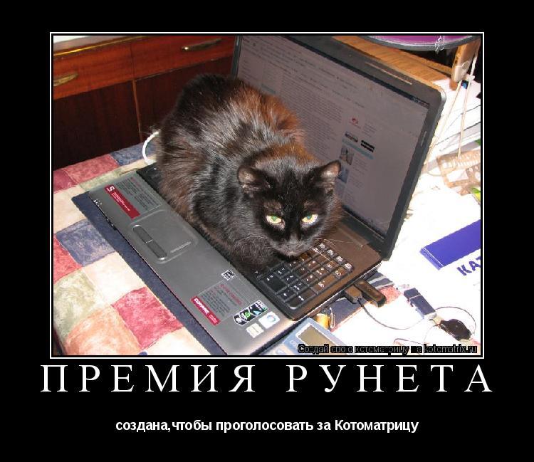 Котоматрица: ПРЕМИЯ РУНЕТА создана,чтобы проголосовать за Котоматрицу