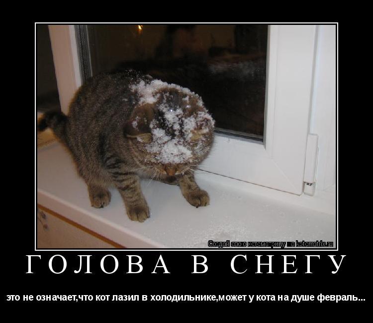 Котоматрица: ГОЛОВА В СНЕГУ это не означает,что кот лазил в холодильнике,может у кота на душе февраль...
