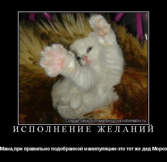 Котоматрица: Исполнение желаний Мама,при правильно подобранной манипуляции-это тот же дед Мороз