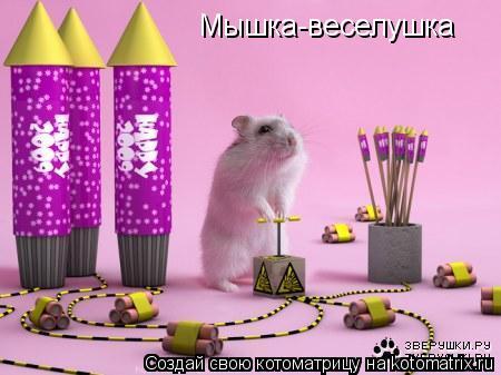 Котоматрица: Мышка-веселушка