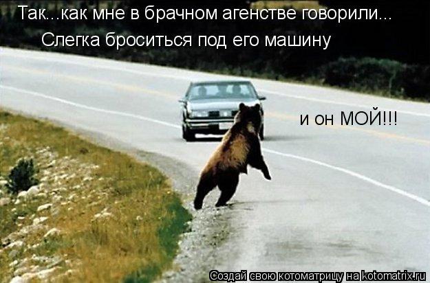 Котоматрица: Так...как мне в брачном агенстве говорили... Слегка броситься под его машину и он МОЙ!!!