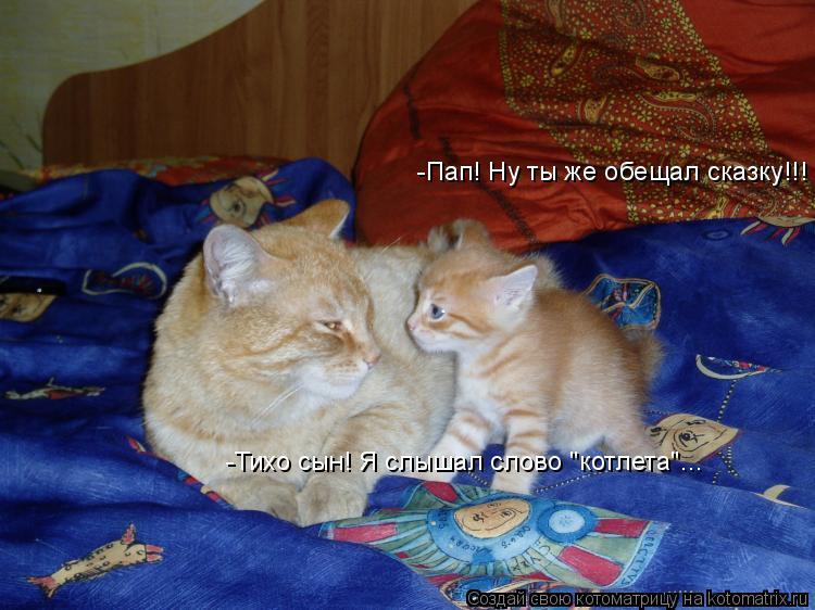 "Котоматрица: -Пап! Ну ты же обещал сказку!!! -Тихо сын! Я слышал слово ""котлета""..."