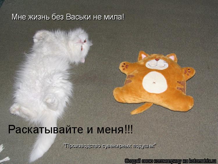"""Котоматрица: Мне жизнь без Васьки не мила! Раскатывайте и меня!!! """"Производство сувенирных подушек"""""""
