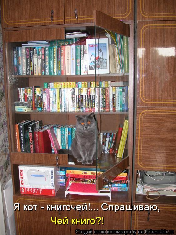 Котоматрица: Я кот - книгочей!... Спрашиваю,  Чей книго?!