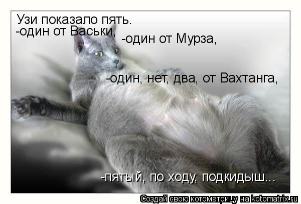 Котоматрица: Узи показало пять. -один от Васьки, -один от Мурза, -один, нет, два, от Вахтанга, -пятый, по ходу, подкидыш...