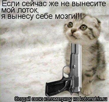 Котоматрица: Если сейчас же не вынесите мой лоток, я вынесу себе мозги!!!