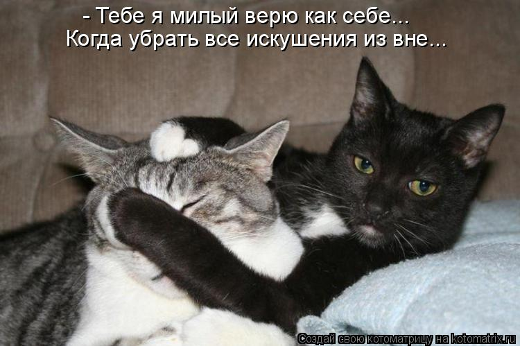 Котоматрица: - Тебе я милый верю как себе... Когда убрать все искушения из вне...