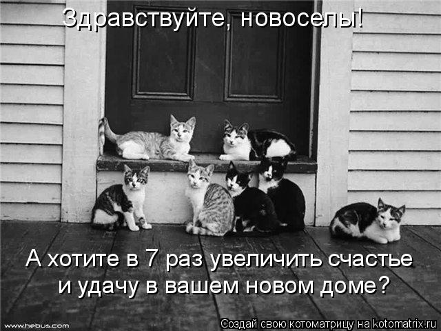 http://kotomatrix.ru/images/lolz/2009/11/13/404514.jpg