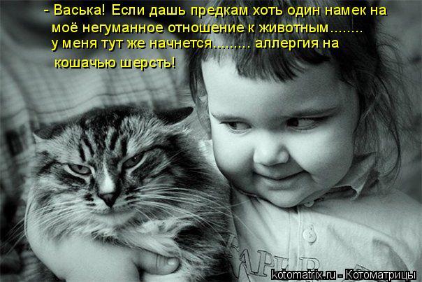 Котоматрица: кошачью шерсть! - Васька! Если дашь предкам хоть один намек на моё негуманное отношение к животным........ у меня тут же начнется......... аллергия