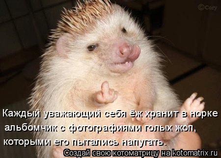 http://kotomatrix.ru/images/lolz/2009/11/13/404523.jpg