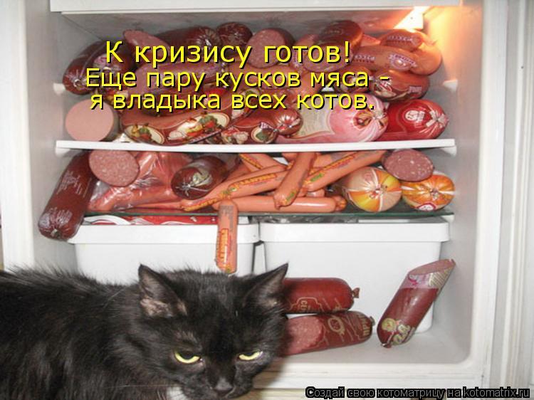 Котоматрица: К кризису готов! Еще пару кусков мяса - я владыка всех котов.