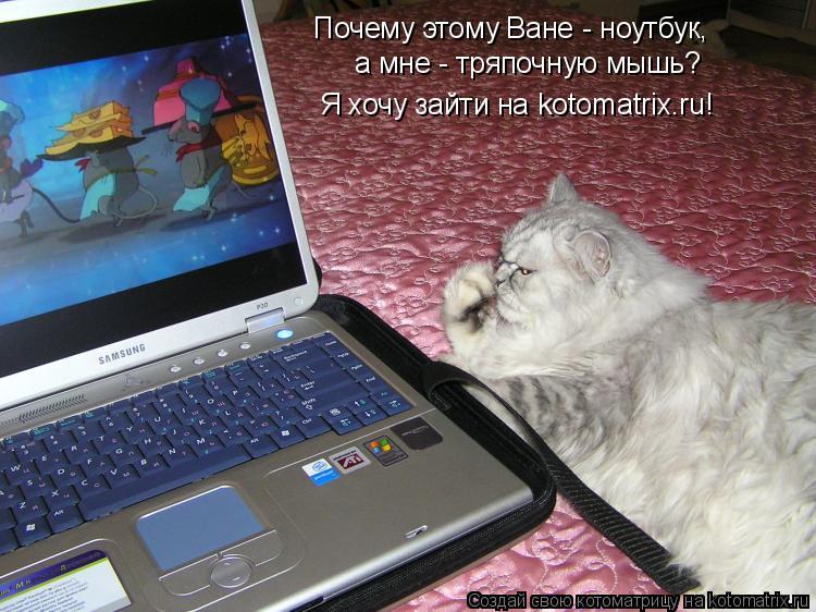 Котоматрица: Почему этому Ване - ноутбук, а мне - тряпочную мышь? Я хочу зайти на kotomatrix.ru!