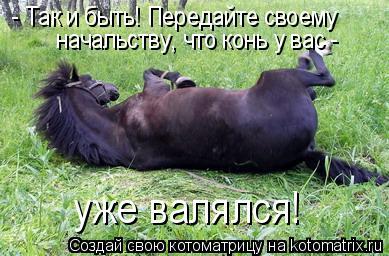 Котоматрица: - Так и быть! Передайте своему  начальству, что конь  уже валялся! у вас -