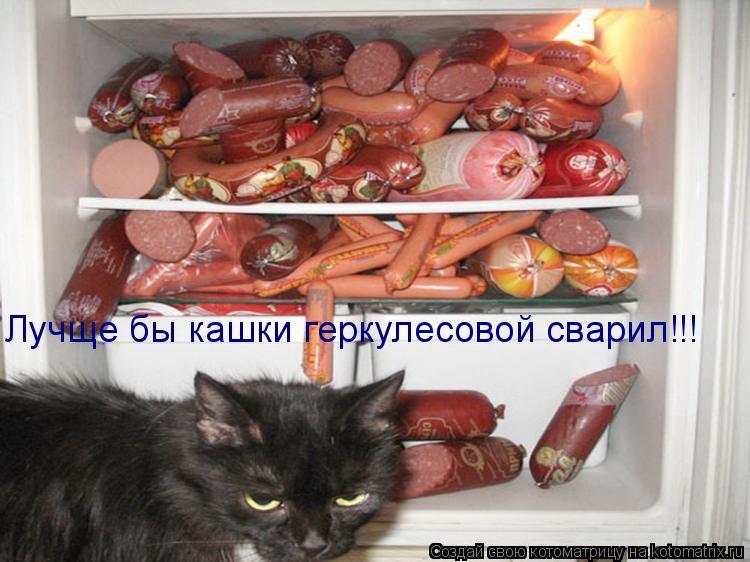 Котоматрица: Лучще бы кашки геркулесовой сварил!!!