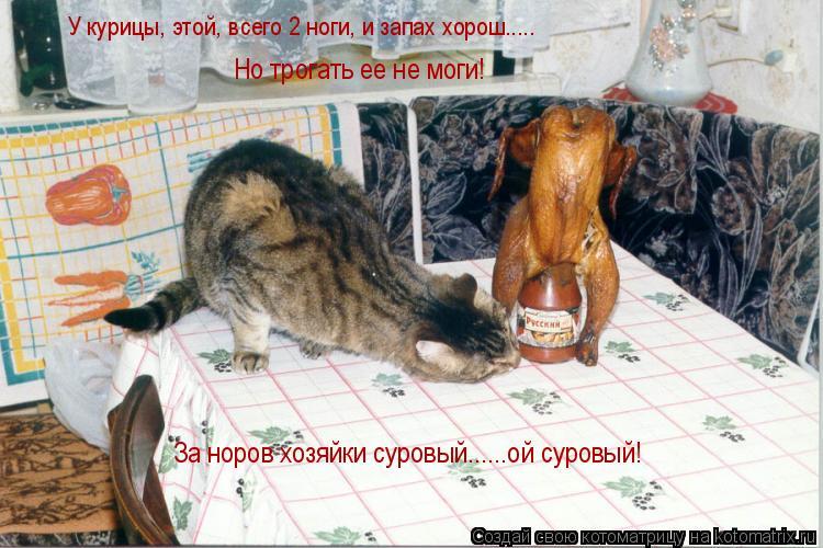 Котоматрица: Но трогать ее не моги! За норов хозяйки суровый......ой суровый! У курицы, этой, всего 2 ноги, и запах хорош.....