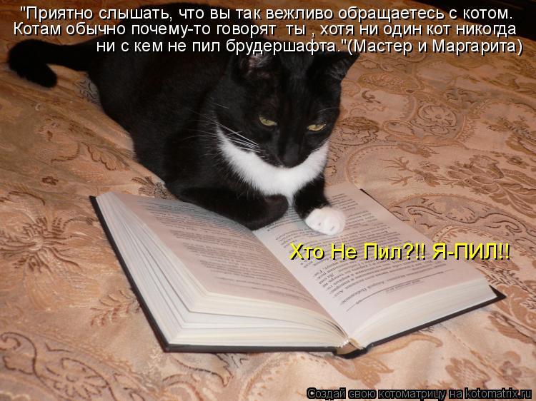 """Котоматрица: """"Приятно слышать, что вы так вежливо обращаетесь с котом.  Котам обычно почему-то говорят «ты», хотя ни один кот никогда   ни с кем не пил бруд"""
